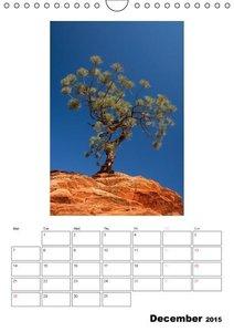 Relaxation - Organizer / UK-Version (Wall Calendar 2015 DIN A4 P