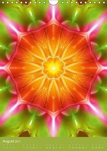 Lichtvolle Mandalas