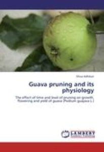 Guava pruning and its physiology