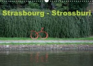 Strasbourg - Strossburi (Calendrier mural 2015 DIN A3 horizontal