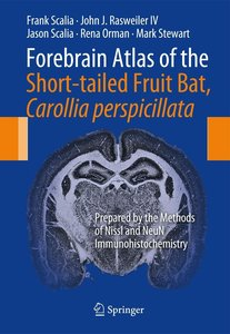 Forebrain Atlas of the Short-tailed Fruit Bat, Carollia perpicil