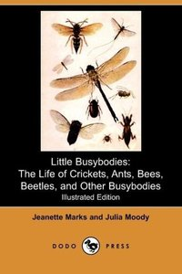 Little Busybodies