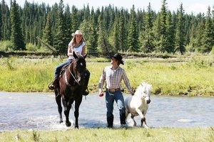 Heartland - Paradies für Pferde, Staffel 6.1