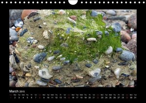 STONES AND THE SEA (Wall Calendar 2015 DIN A4 Landscape)