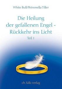 Die Heilung der gefallenen Engel - Rückkehr ins Licht