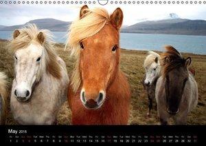 Icelandic Colors (Wall Calendar 2015 DIN A3 Landscape)