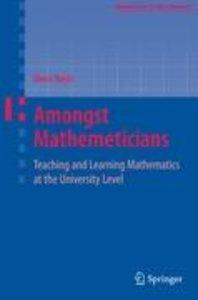 Amongst Mathematicians