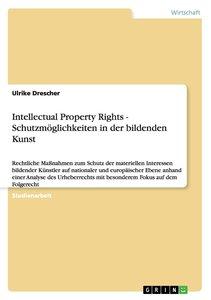 Intellectual Property Rights - Schutzmöglichkeiten in der bilden