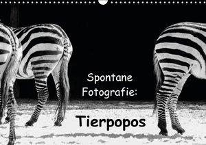 Spontane Fotografie: Tierpopos (Wandkalender 2016 DIN A3 quer)