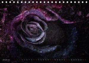 Gothic Rose - Rosen aus dem Garten der Finsternis (Tischkalender