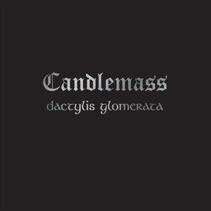 Dactylis Glomerata (Limited Edition)