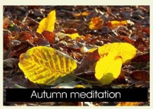 Autumn Meditation (Poster Book DIN A4 Landscape)