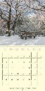Light´s Symphony (Wall Calendar 2015 300 × 300 mm Square)