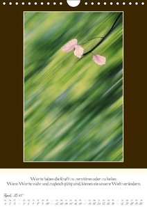 Dölling, A: Buddhistische Weisheiten begleiten durch das Jah