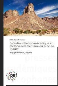 Evolution thermo-mécanique et tectono-sédimentaire du bloc de Dj