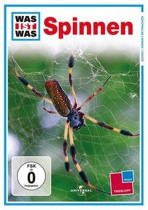Was ist Was TV. Spinnen / Spiders. DVD-Video