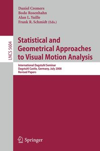Statistical and Geometrical Approaches to Visual Motion Analysis