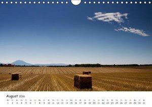 Malerische Provence (Wandkalender 2016 DIN A4 quer)