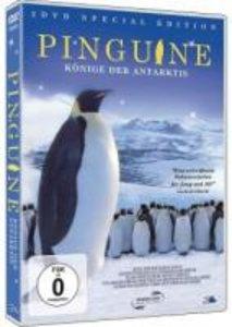 Pinguine - Die Könige der Antarktis