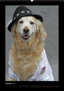 Hunde-Karneval
