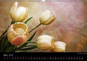 Blütenromantik (Wandkalender 2016 DIN A3 quer)