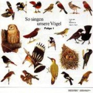 So Singen Unsere Vögel 1