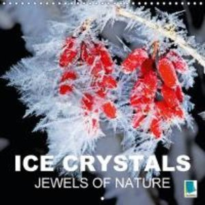 Calvendo: Ice Crystals - Jewels of Nature