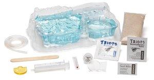 Triops - Urzeitkrebse erleben