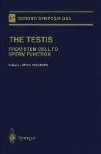 The Testis
