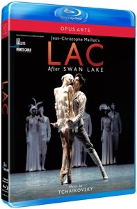 LAC after Swan Lake