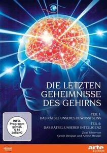 Die letzten Geheimnisse des Gehirns