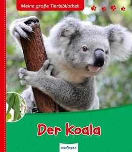 Der Koala