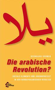 Die arabische Revolution?
