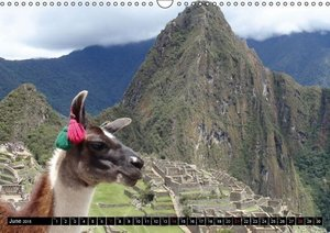 Time to Dream Panamericana 2015 (Wall Calendar 2015 DIN A3 Lands