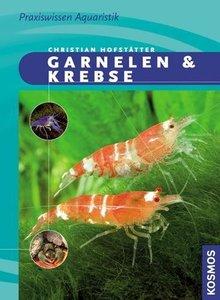 Garnelen & Krebse