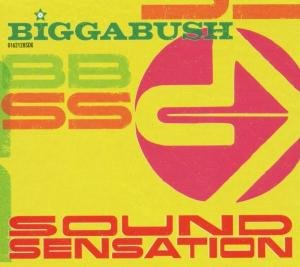 Biggabush-Sound Sensation