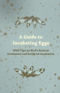 A Guide to Incubating Eggs - With Tips on Bird's Natural Incubat