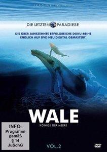 Wale - Könige der Meere