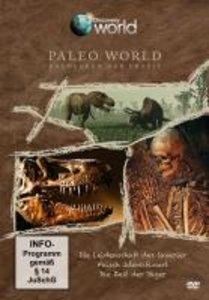 Paleo World Entdecken die Urzeit