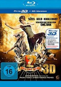Fighting Beat 2 3D