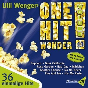 One Hit Wonder Vol.13