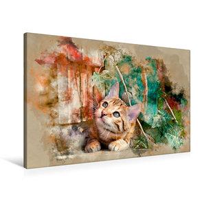Premium Textil-Leinwand 90 cm x 60 cm quer Die junge Katze unter