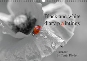 Black and white diary paintings by Tanja Riedel Great Britain Ed