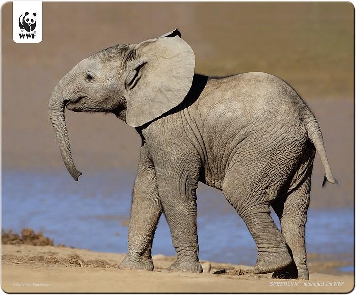Speedlink TERRA WWF Mousepad Elephant, Mauspad Elefant - zum Schließen ins Bild klicken