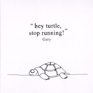 Hey Turtle,Stop Running! (Plus Downloadcode)