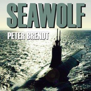 Seawolf: U-Boot-Kampf Im Persischen Golf.Thriller