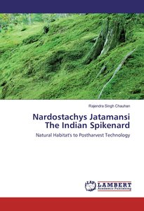 Nardostachys Jatamansi The Indian Spikenard