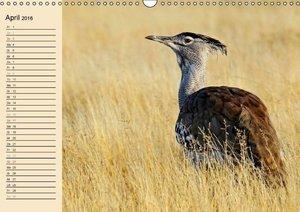 Afrika - fernab der Big 5 (Wandkalender 2016 DIN A3 quer)