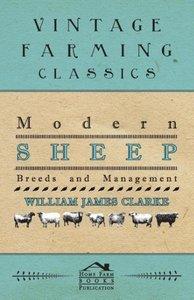 Modern Sheep - Breeds and Management