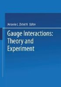 Gauge Interactions